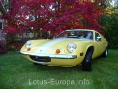 Lotus Europa in front of maple trees